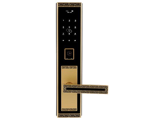 CX1601-1防盗智能锁